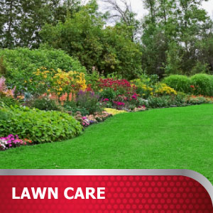 Lawn Care Products